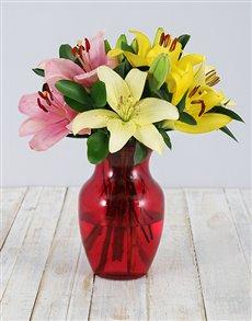 flowers: Lily Colour Blast Arrangement!