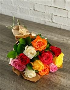 flowers: Colourful Rose Magic!