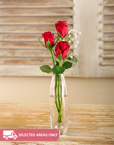 flowers: 3 Red Roses in a Glass Vase!