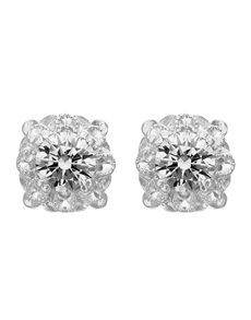 jewellery: Jenna Clifford Kimberley Earrings ER170 DAISY CZ!