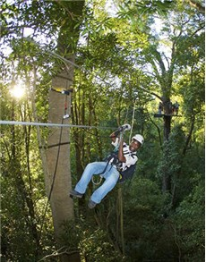 gifts: Canopy Tours   Western Cape!