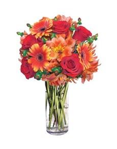 flowers: Summer Nights Gift!