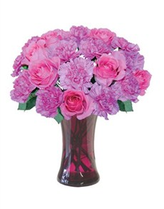 flowers: In the Pink!