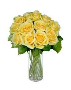 flowers: 12 Yellow Roses!