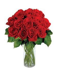 flowers: 12 Red Roses!