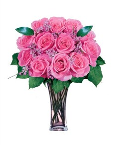 flowers: 12 Pink Roses!