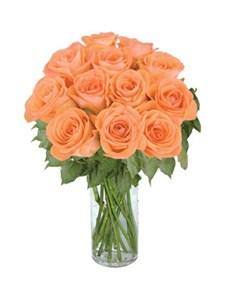 flowers: 12 Peach Roses!