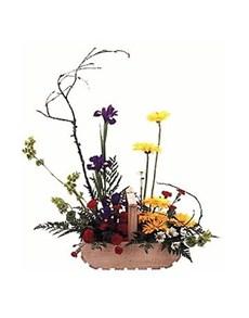 flowers: Elegant Modern Basket!