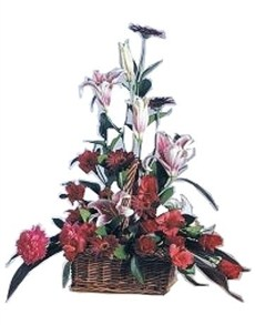 flowers: Magical Moulin Rouge Display!