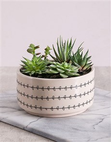 gifts: Desert Flora in Love Leaf Bowl!