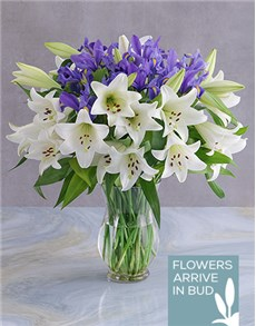 flowers: Mothers Day Lily And Iris Arrangement!