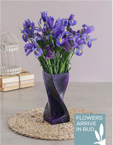 flowers: Blue Irises in a Purple Twisty Vase!