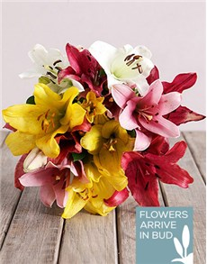 flowers: Assorted Lily Mix Bouquet!