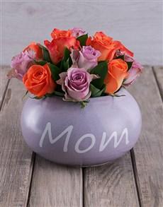 flowers: Distinctive Mom in Pot!