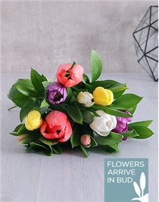 flowers: Mixed Tulip Bouquet!