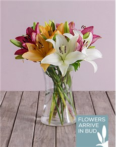 flowers: Lush Lilies In A Clear Vase!
