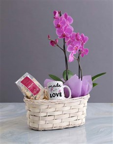 flowers: Mothers Day Orchid Hamper!