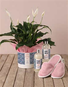 plants: Pretty Plants and Pampering Present!