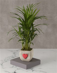 flowers: Heartfelt Bamboo Pot For Mom!