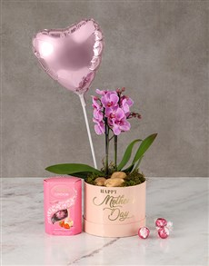 flowers: Pretty In Pink Orchid Hamper!