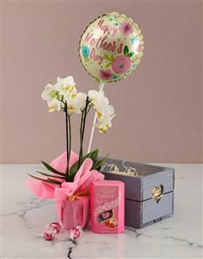 flowers: Love And Orchids Hamper!