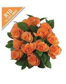 Flowers: Cotlands 15 Orange Roses in Cellophane!