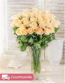 flowers: Cream Roses in a Vase!