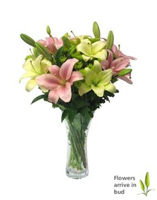flowers: Lilies and Chrysanths in a Glass Vase!