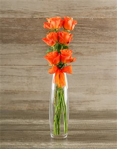 flowers: Say it with Six   Orange!