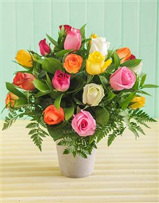 flowers: Mixed Roses in Pottery Vase!