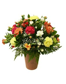 flowers: Mixed Carnations in a Pottery Vase!