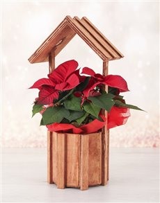flowers: Poinsettia in Wooden Roof Vase!