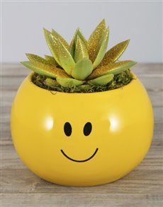 plants: Gold Glitter Succulent in Smiley Pot!