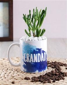 plants: Grandad Succulent Mug Gift!