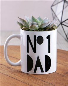 flowers: No1 Dad Succulent Mug!