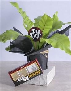 plants: Rad Dad Asplenium Nidus!