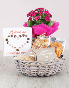 flowers: Kalanchoe and Snacks Basket!