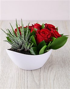 plants: Red Rose and Succulent Boat!