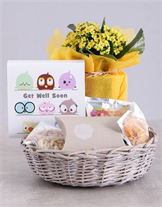 plants: Get Well Kalanchoe and Snacks Basket!
