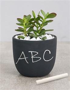 gifts: Succulent Chalk Pot!