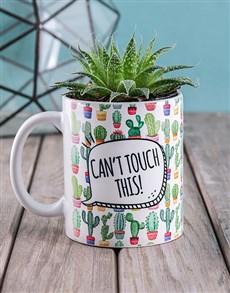 flowers: Cant Touch This Cactus!