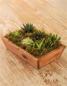flowers: Creative Cacti Tray!