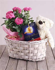 gifts: Roses and Cuddles Gift Basket!