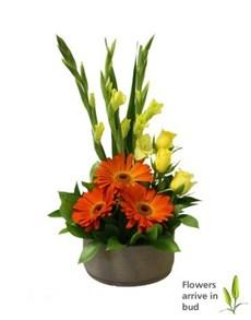 flowers: Bright Gerbera Rose and Gladioli Arrangement!