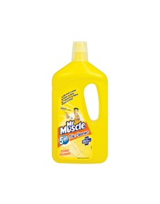groceries: MR MUSCLE TILE CLEANER 750ML, CITRUS!