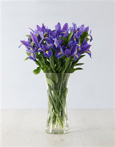 flowers: Irises in a Glass Vase!