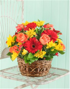 gifts: Seasonal Flowers in a Country Basket!