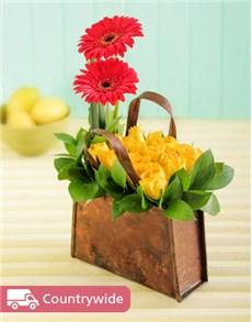 flowers: Sunwashed!
