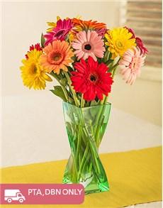 flowers: Mixed Gerberas in Twisty Green Vase!
