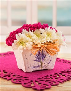 flowers: Pink & White Spray Gift!